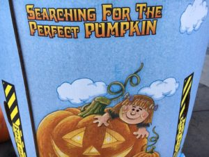 """What to do in autumn? the image said """"searching for the perfect pumpkin"""""""