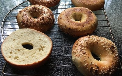 Bakery in Olympia changed my mind about bagels